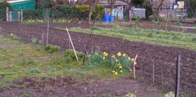 Des jardins ouvriers vont disparaître à Aubervilliers